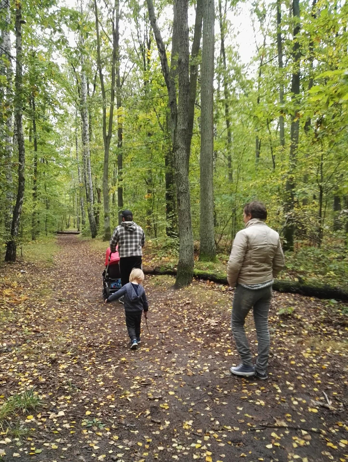 Na leśniej ścieżce spacerują dwie osoby z dzieckiem i wózkiem.
