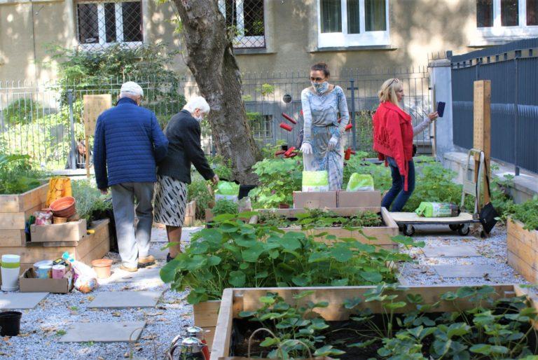 Cztery osoby w ogrodzie.