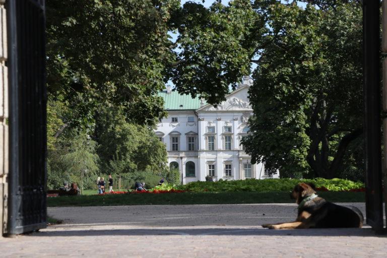 Pałac Krasińskich.