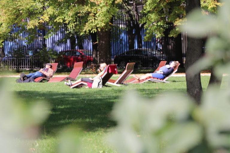 Osoby leżące na leżakach w parku.