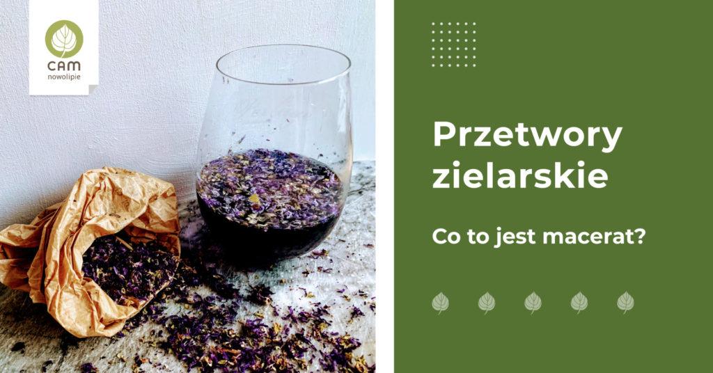 szklanka z z ziołami i napis Przetwory zielarskie - Co to jest macerat