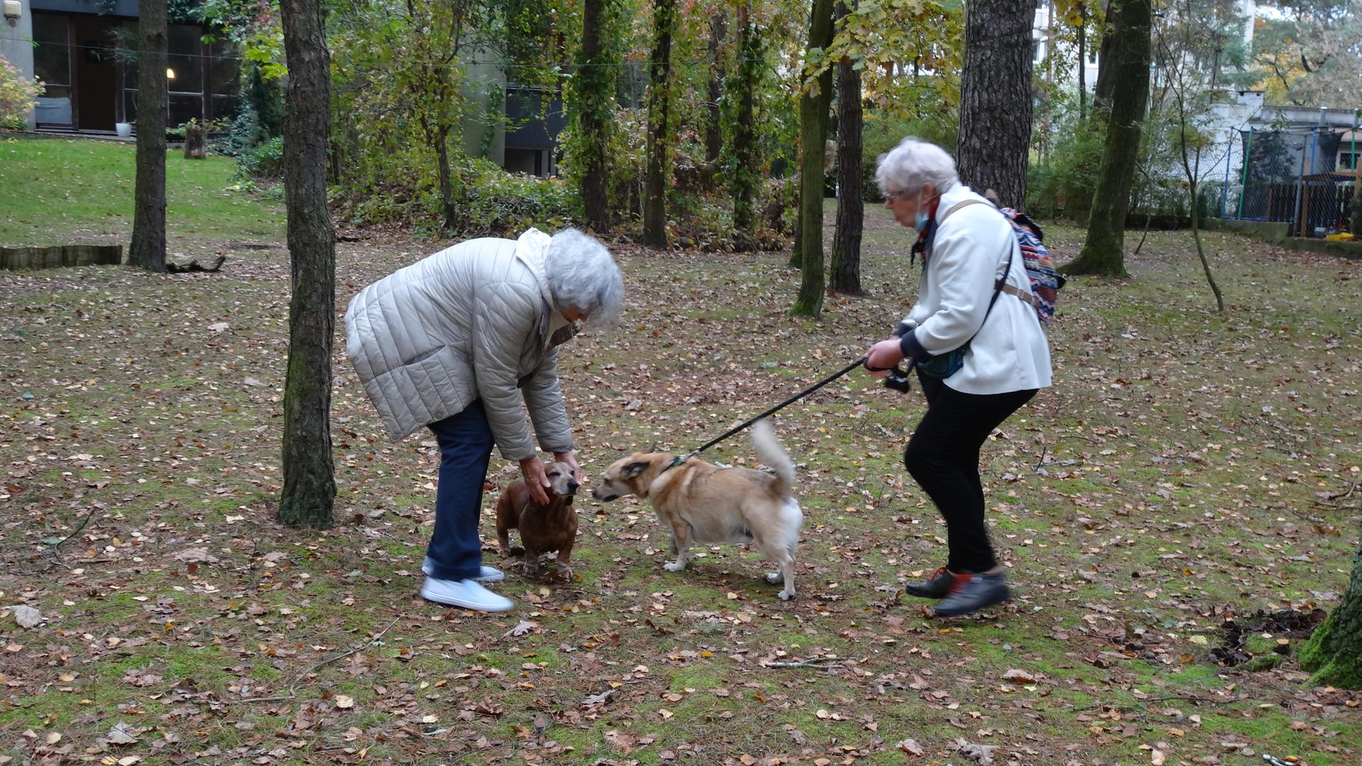 Dwie kobiety w parku, jedna trzyma na smyczy psa.