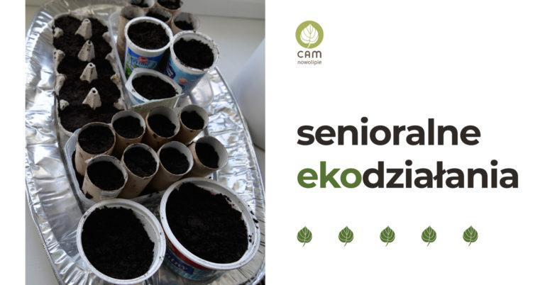 W naczyniach z recyklingu zostały posiane nasiona na sadzonki.