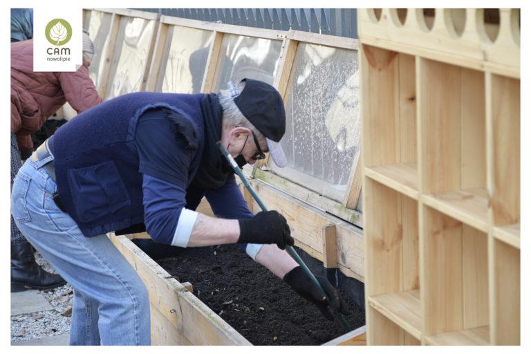 Senior robi kijkiemk zagłębienia w ziemi w skrzyni do siania nasion.
