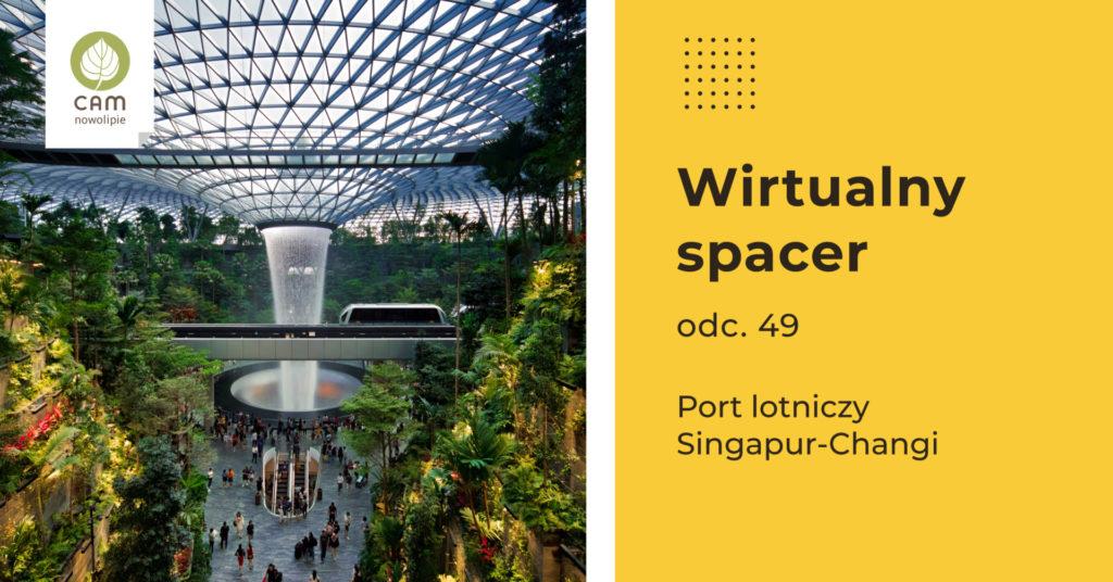 Grafika złożona z dwóch części. Po lewej zdjęcie z części lotniska z ogromnym wodospadem, i bogatą roślinnością. Po prawej opis wydarzenia.